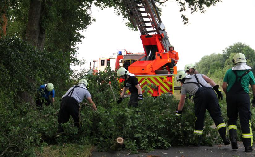05.07.2015 – Baum drohte nach Blitzeinschlag auf Bahnstrecke zu stürzen