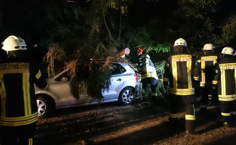 09.11.2015 – Baum kippt auf Pkw und blockiert die Fahrbahn